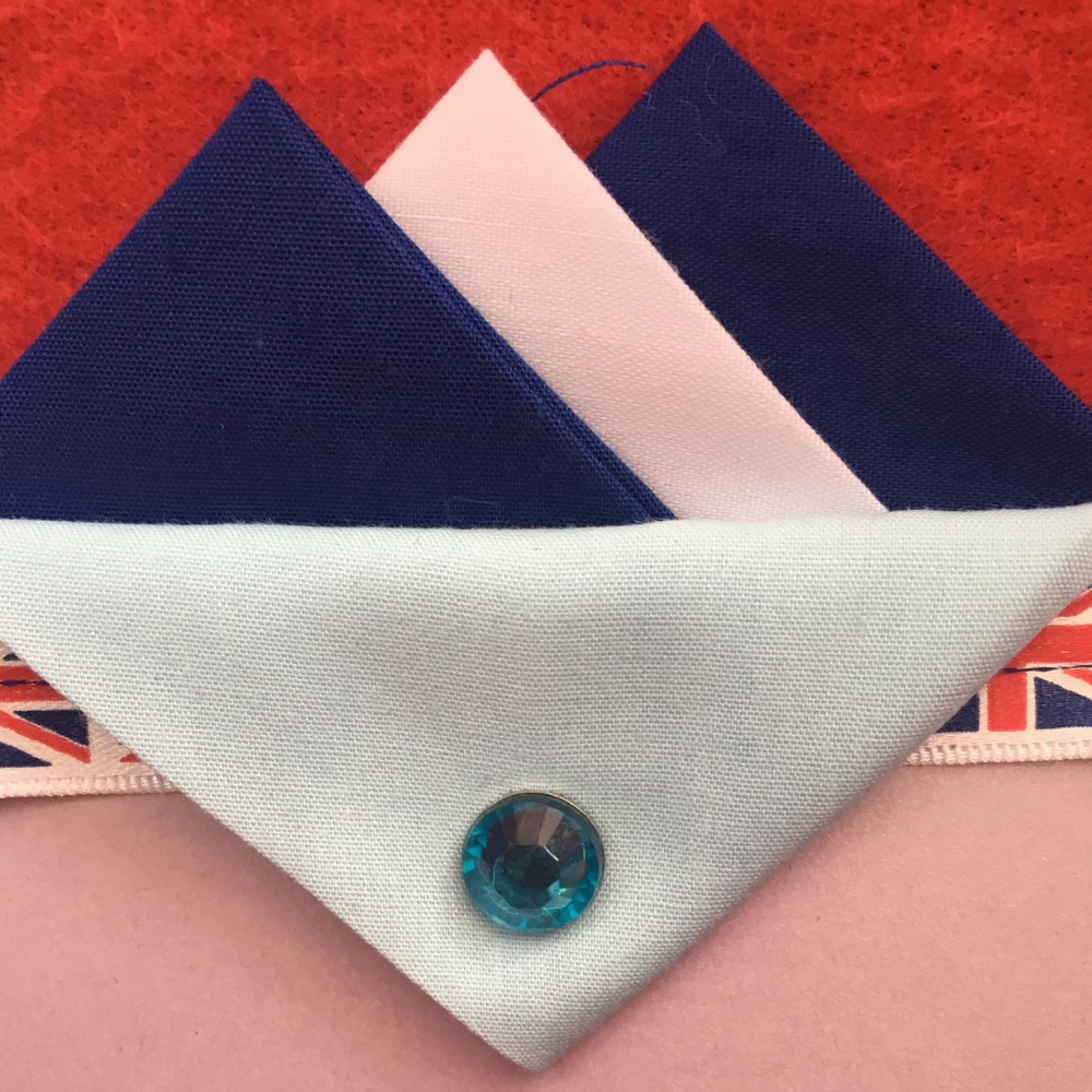 Dark Blue and White Hankie With White Flap and Pin